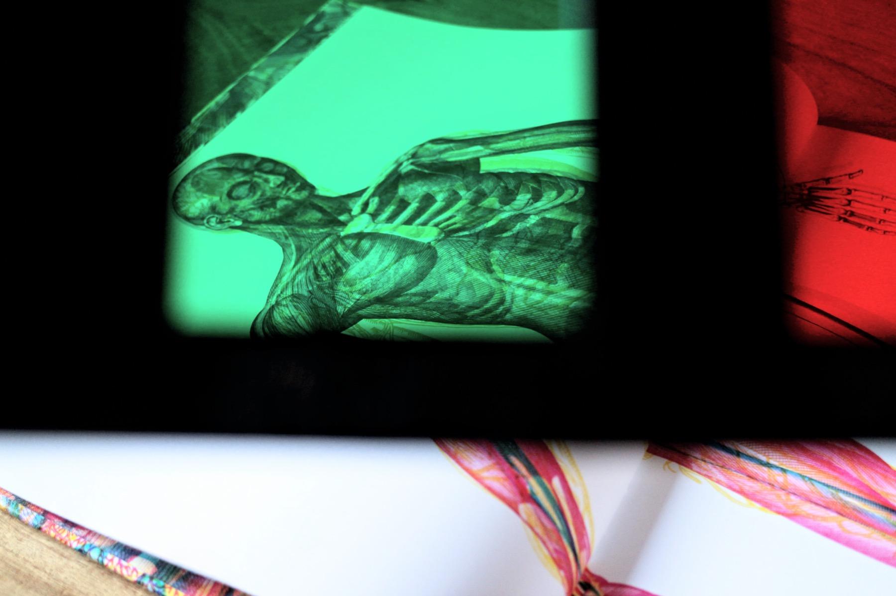 carnovsky corpo umano 8