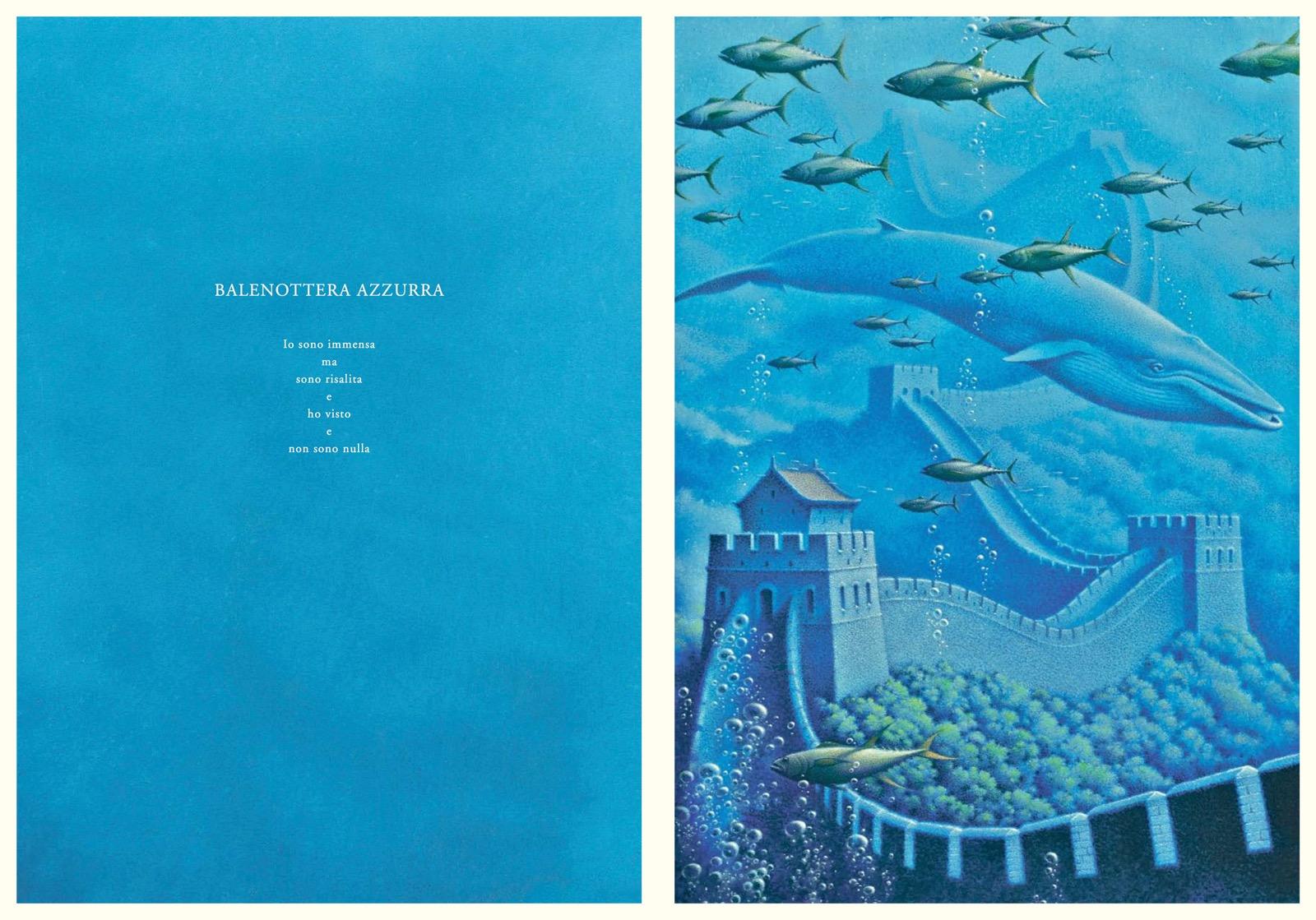 il sogno del nautilus 4