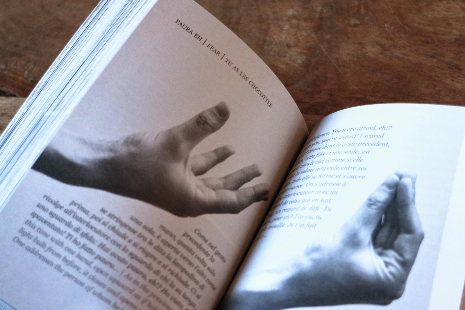 il dizionario dei gesti 13