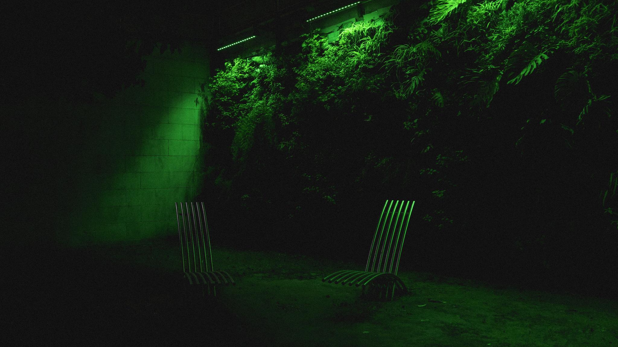 Sonjia Lecca sedie