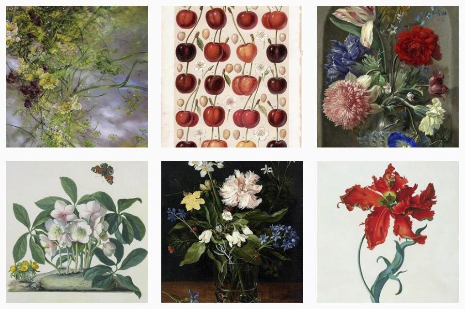 art herbarium 1