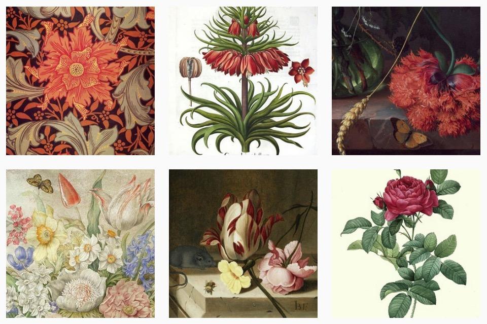 art herbarium 5