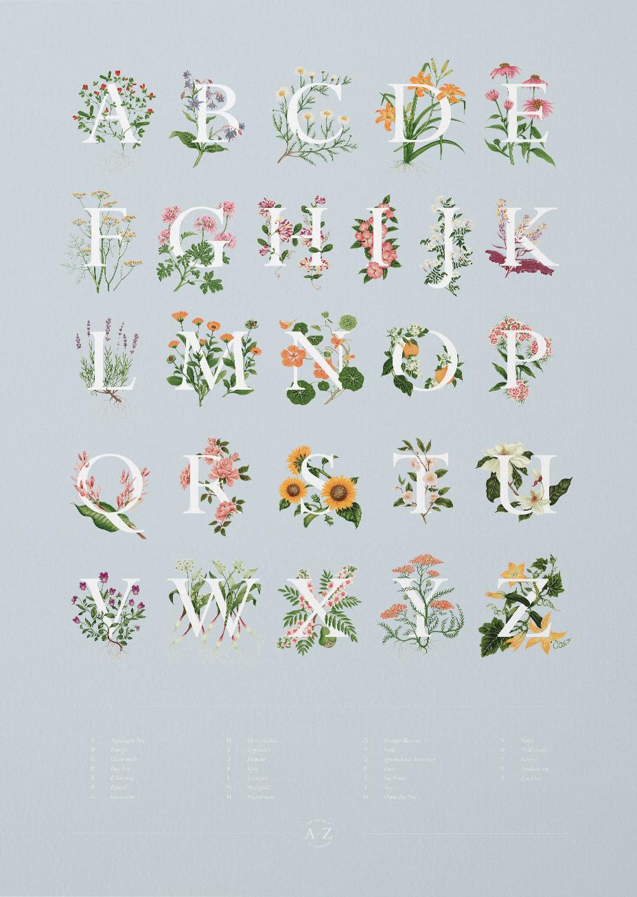 L'alfabeto botanico di Charlotte Day