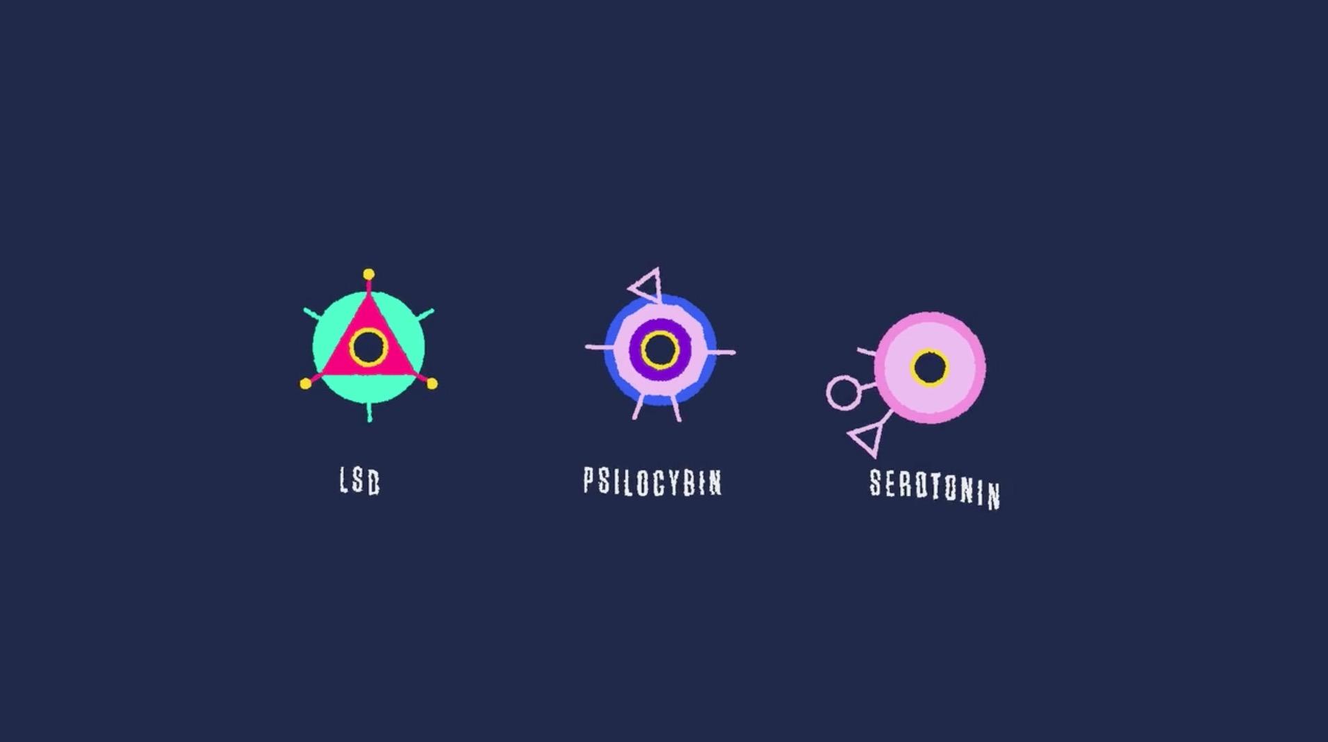 Nerdo Hallucinations 8