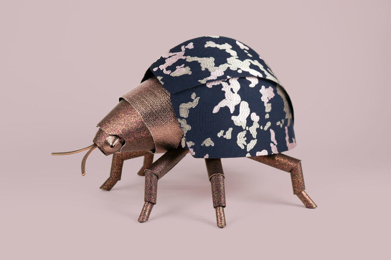 heavyeyes knoll beetle1