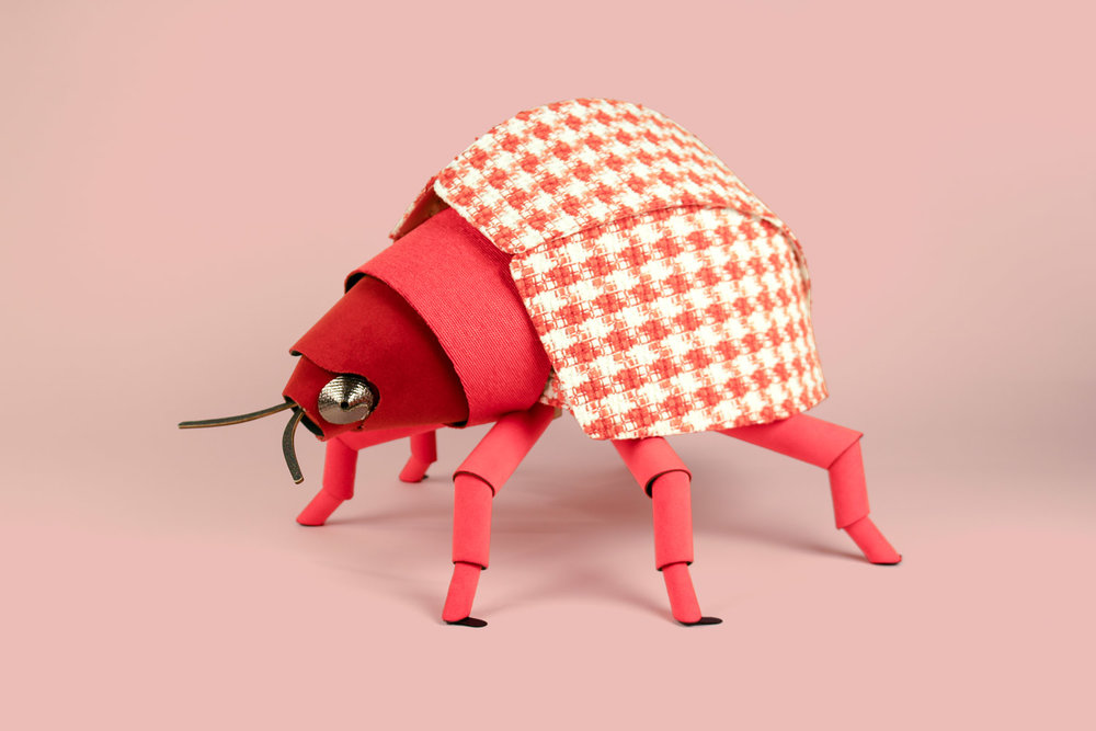 heavyeyes knoll beetle4