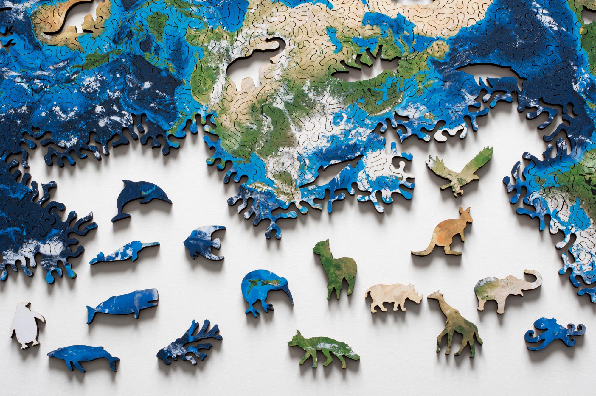La mappa del nostro pianeta è un puzzle infinito