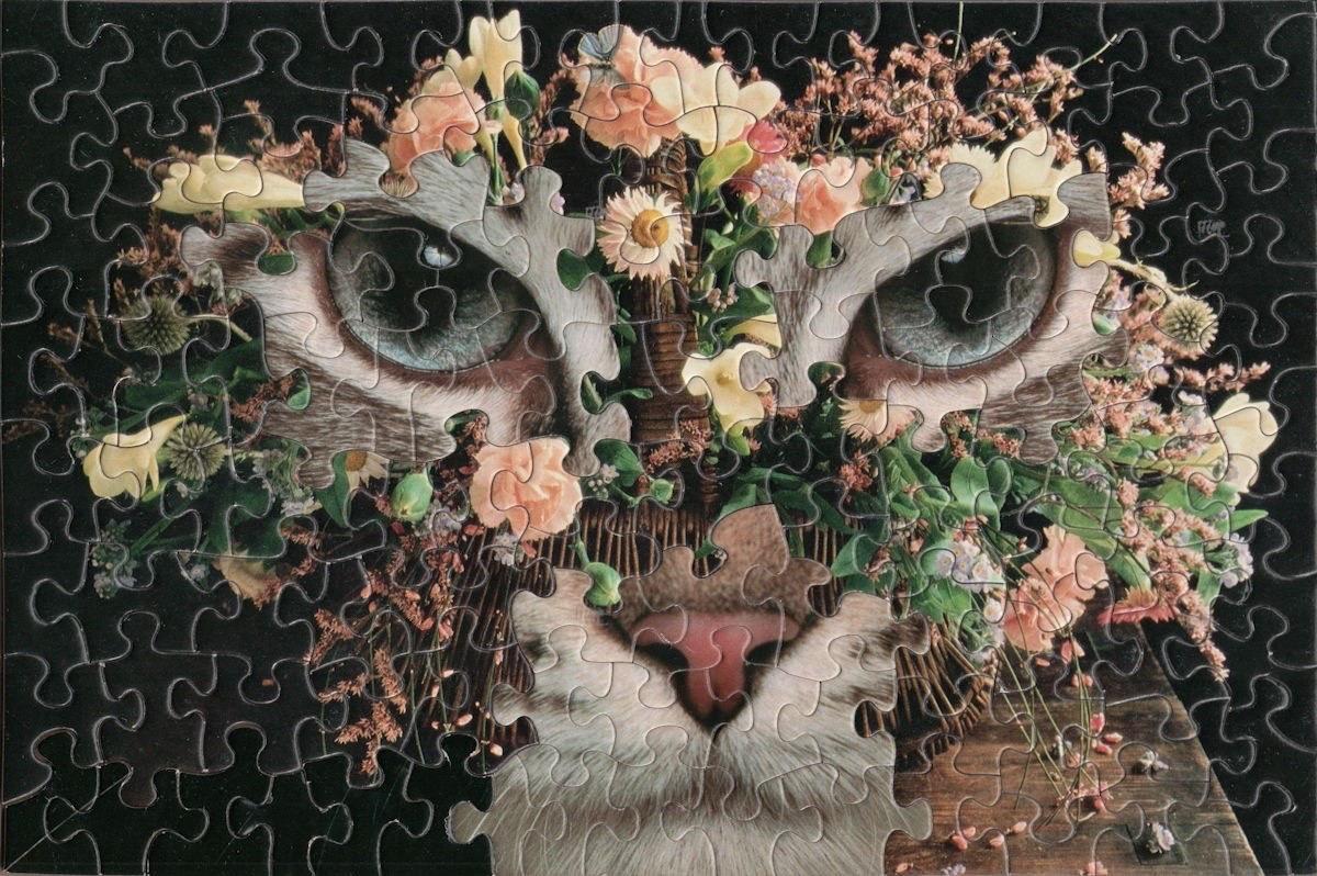 I puzzle dadaisti di Tim Klein