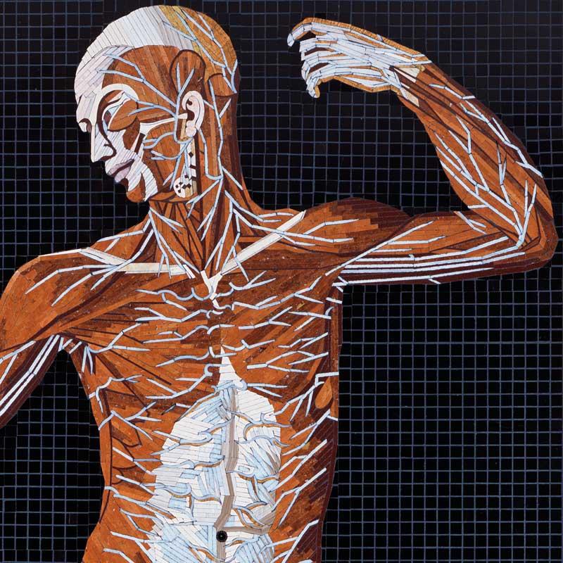 Gli antichi disegni anatomici di Bartolomeo Eustachi diventano dei mosaici