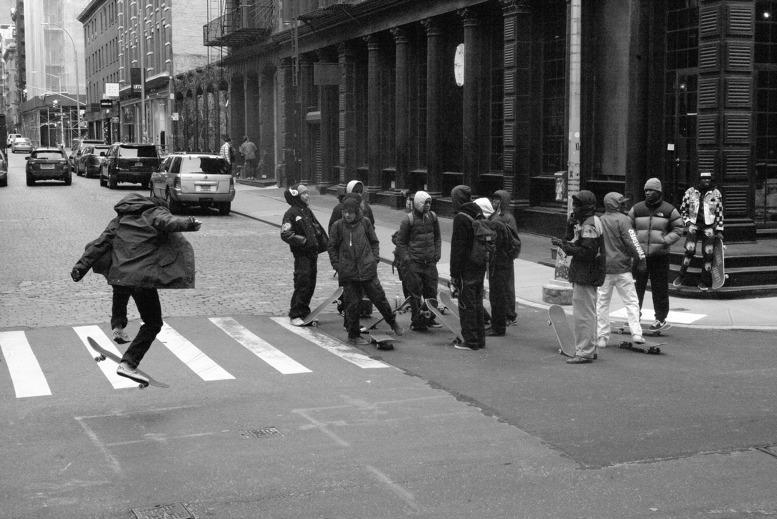 Flickr/Week(r)   La giungla urbana