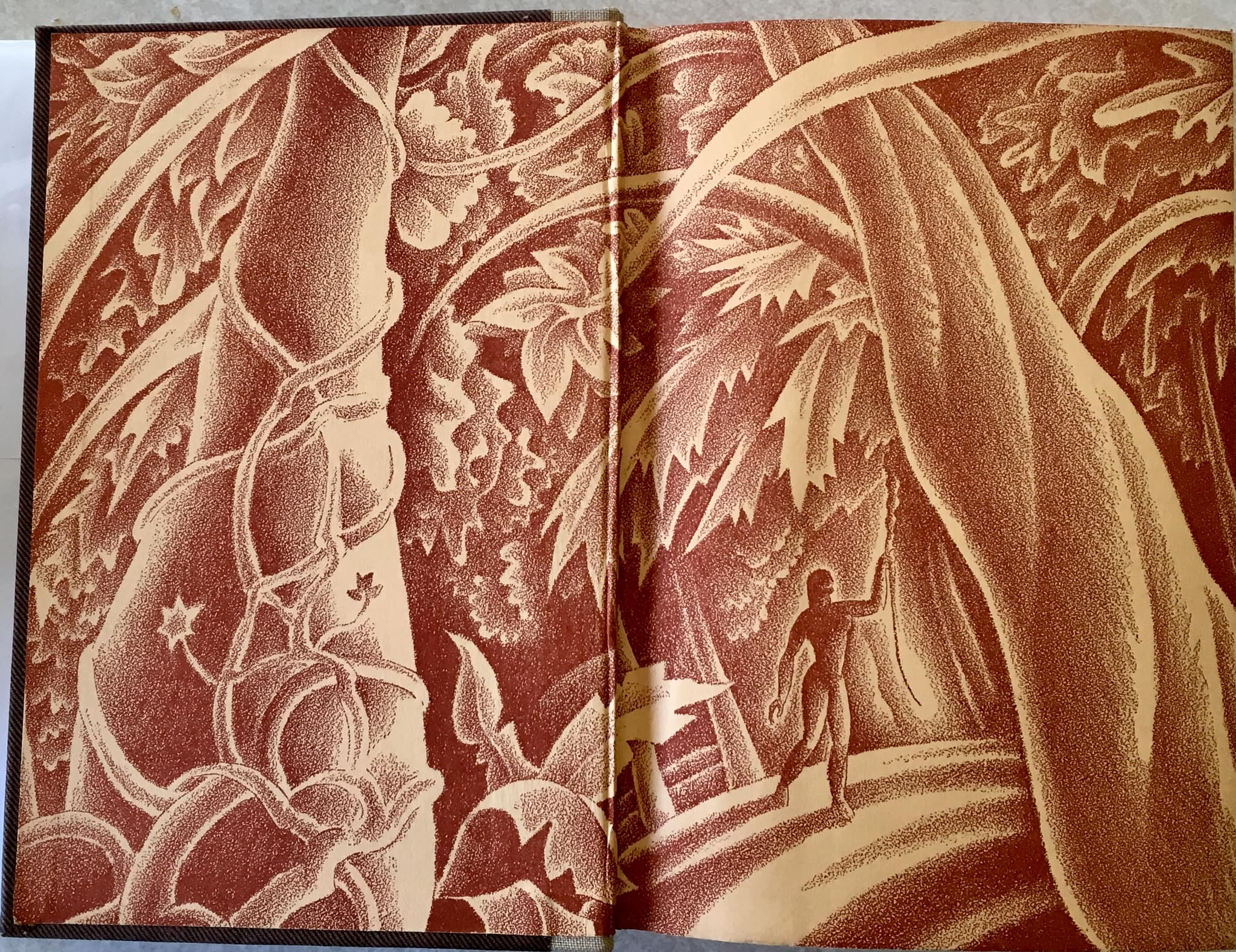 endpapers 7