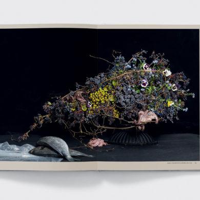 phaidon blooms 4