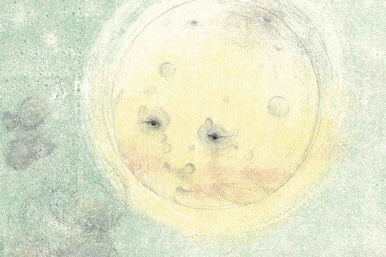 sonata per la signora luna cover