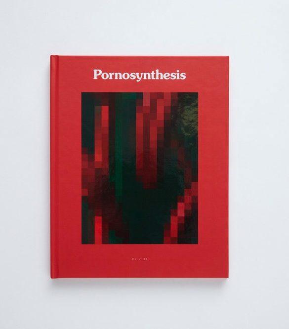 Pornosynthesis 2