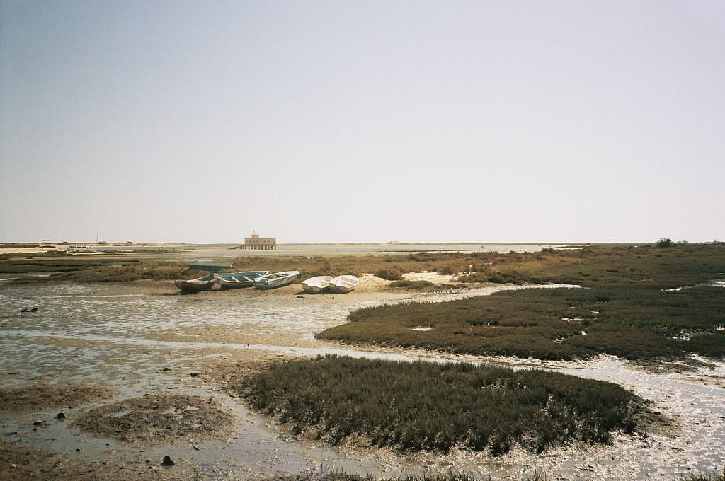 michel nguie antropocene