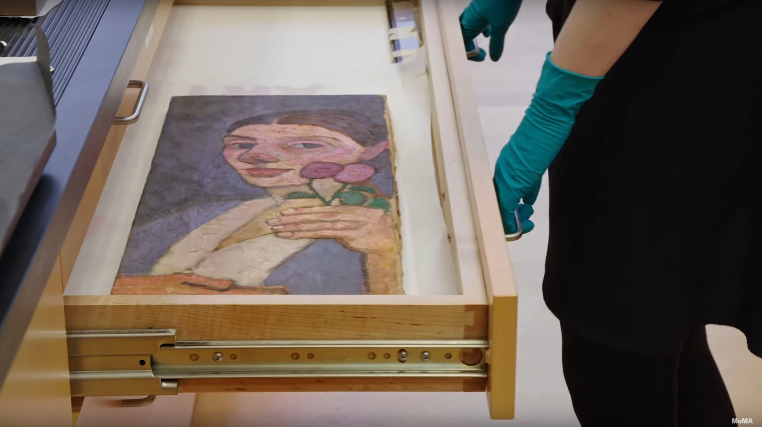moma conservation 1