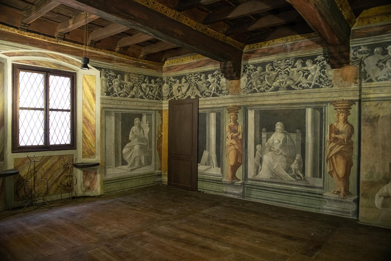 vercelli museo leone 10