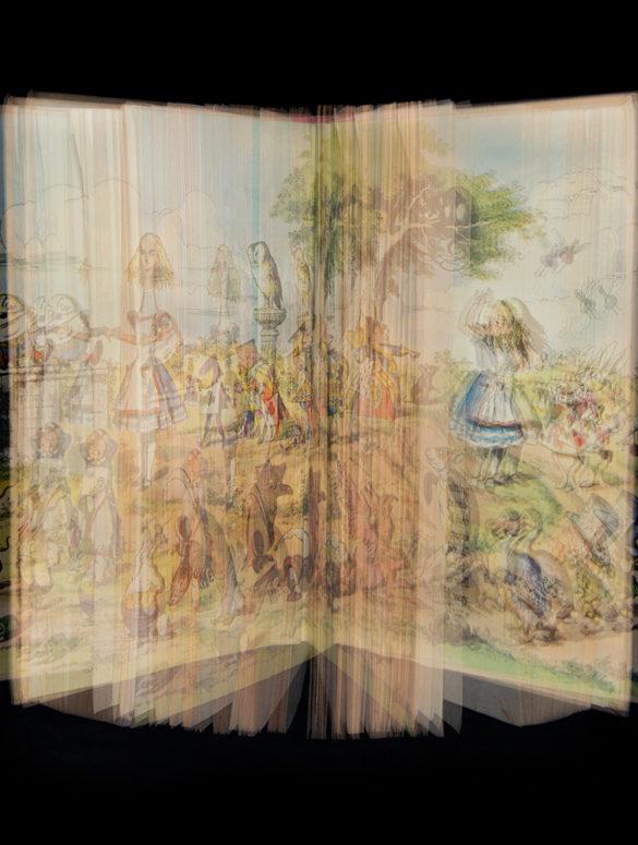 Ellen Cantor© Alice In Wonderland