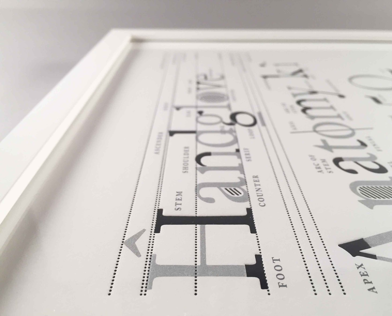Type Anatomy Letterpress Print 1