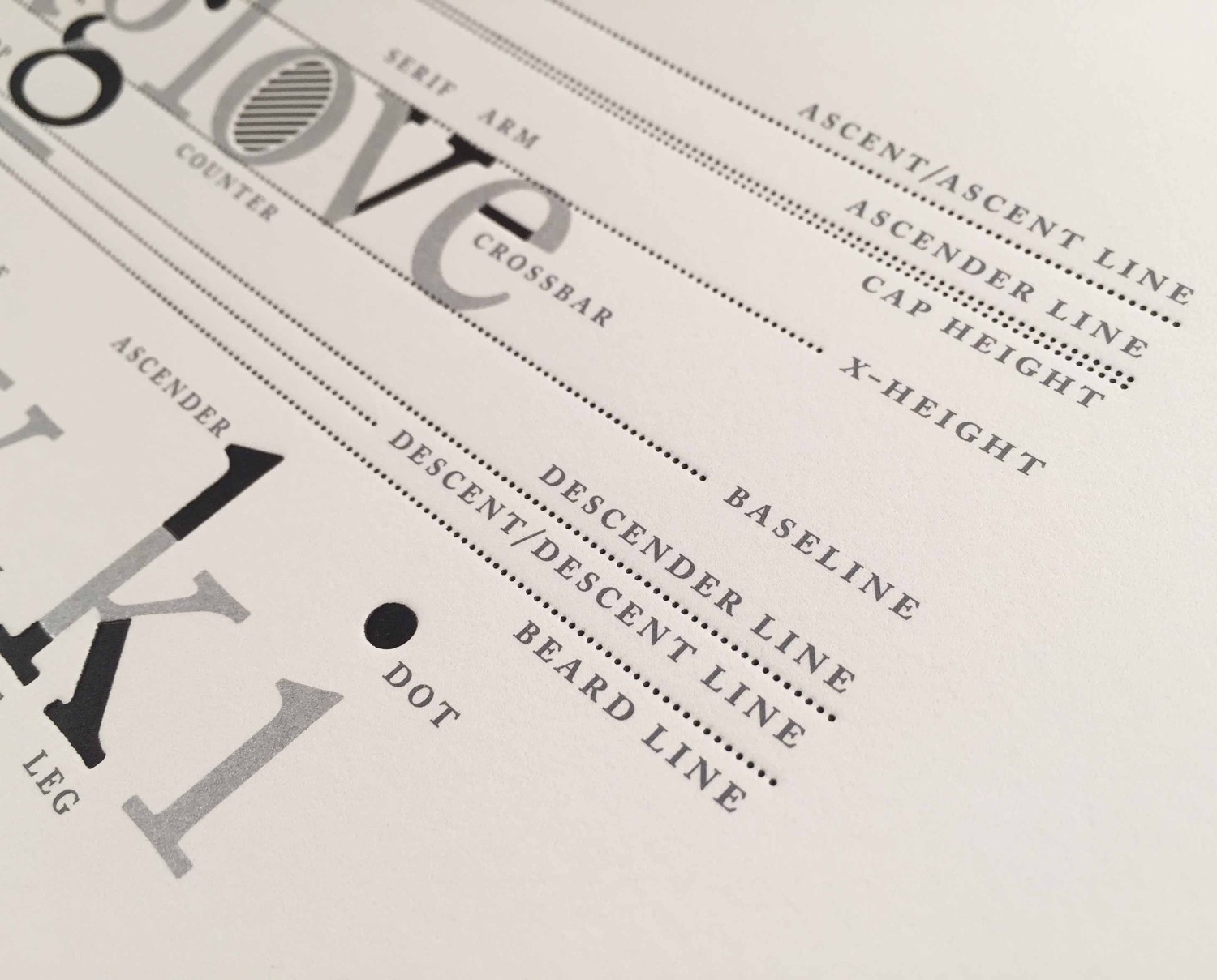 Type Anatomy Letterpress Print 5