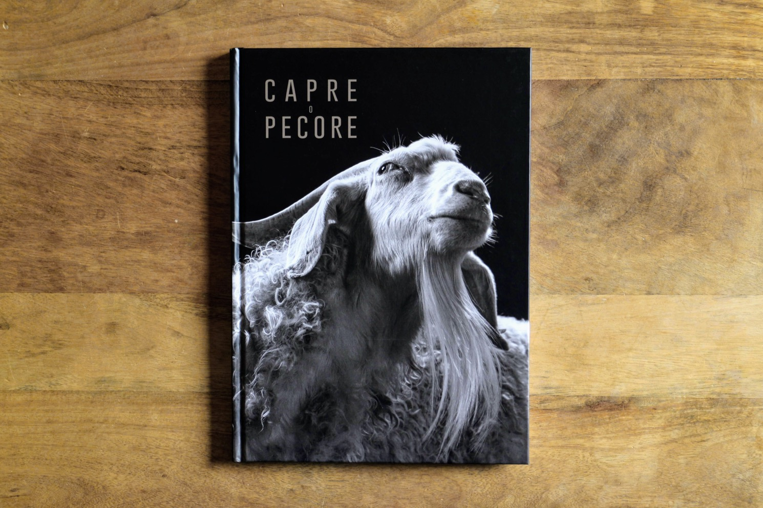 capre pecore 1