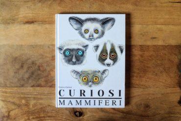 curiosi mammiferi 1