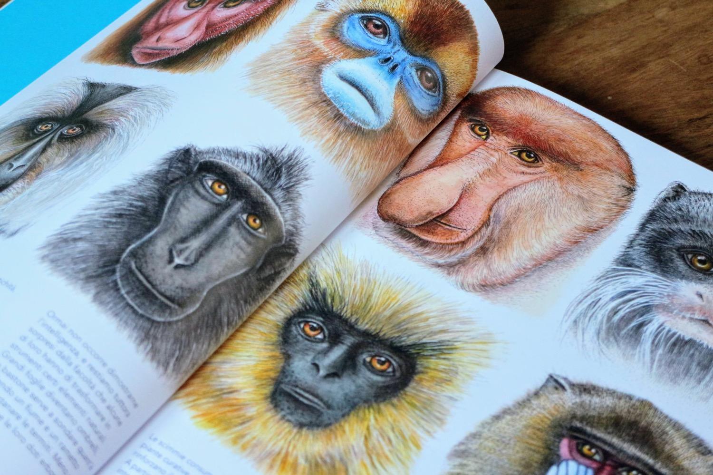 curiosi mammiferi 4