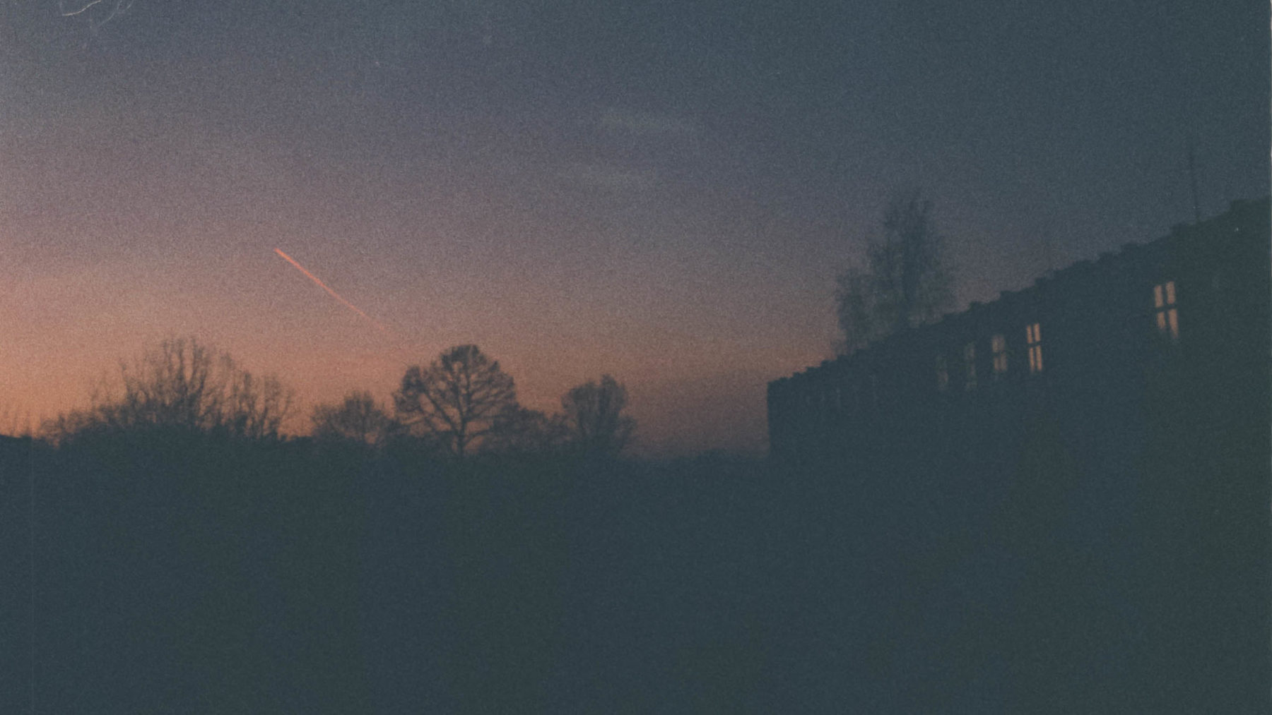 Darko Milosevic sunforest