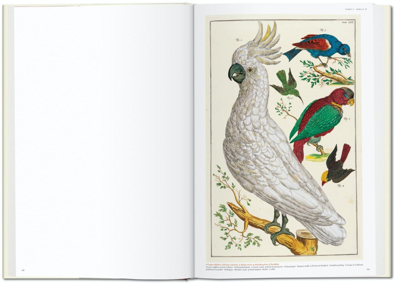 Seba Cabinet of Natural Curiosities taschen 3