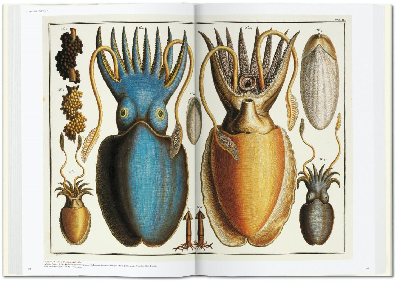Seba Cabinet of Natural Curiosities taschen 7
