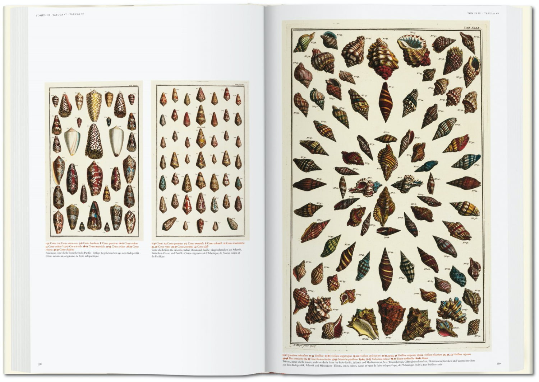 Seba Cabinet of Natural Curiosities taschen 8