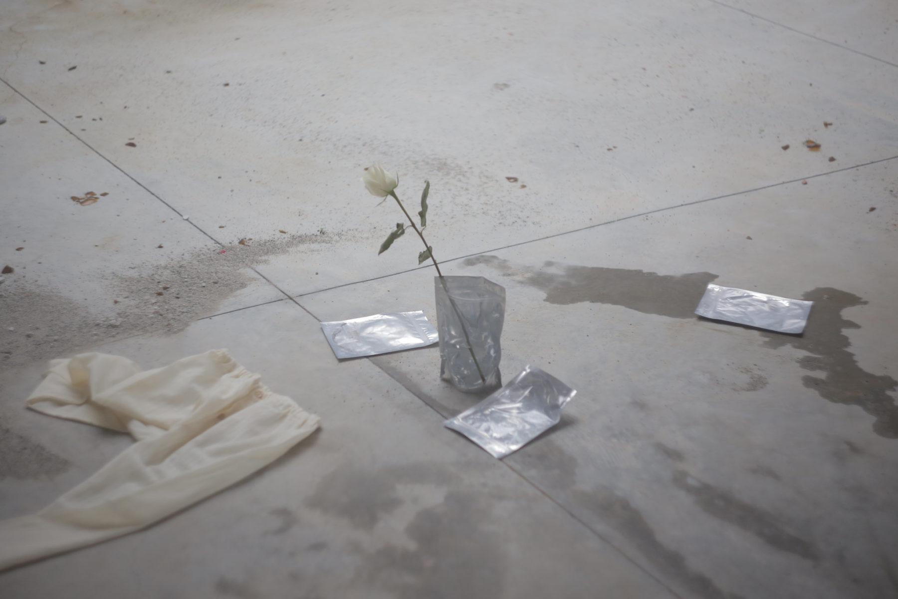 antonia messineo fiori