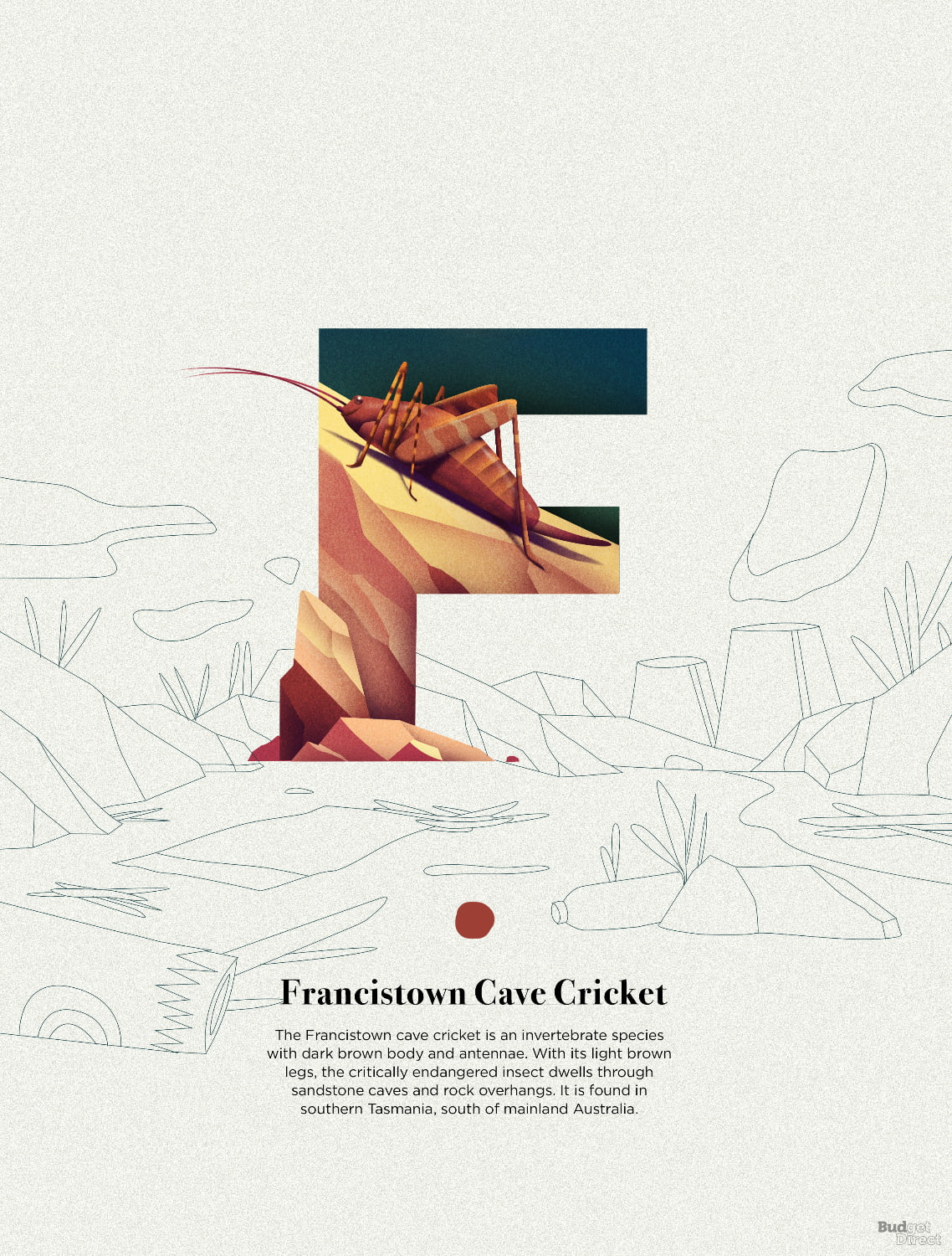F is for Francistown Cave Cricket