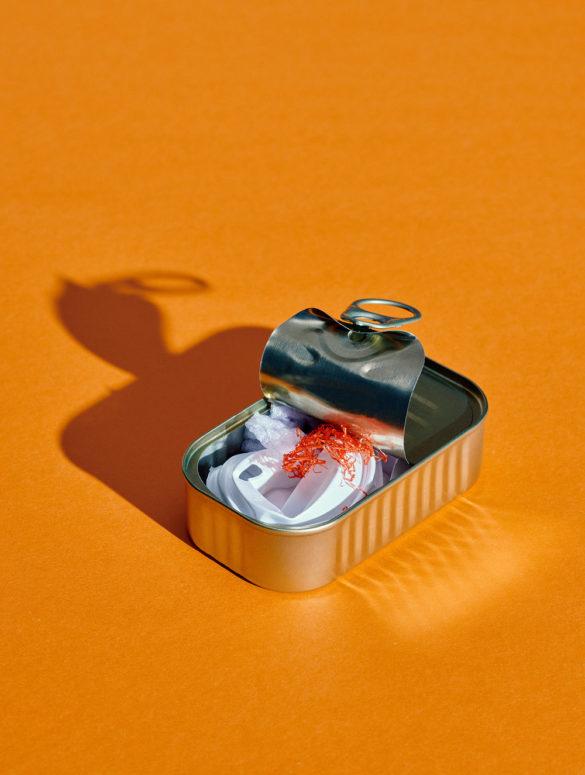 MICROPLASTIC Fish © Morten Bentzon lowres