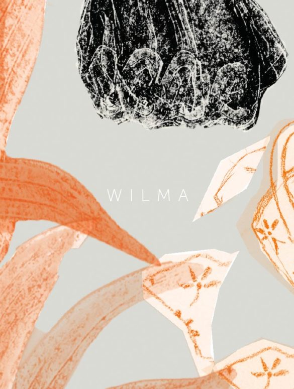 wilma detail