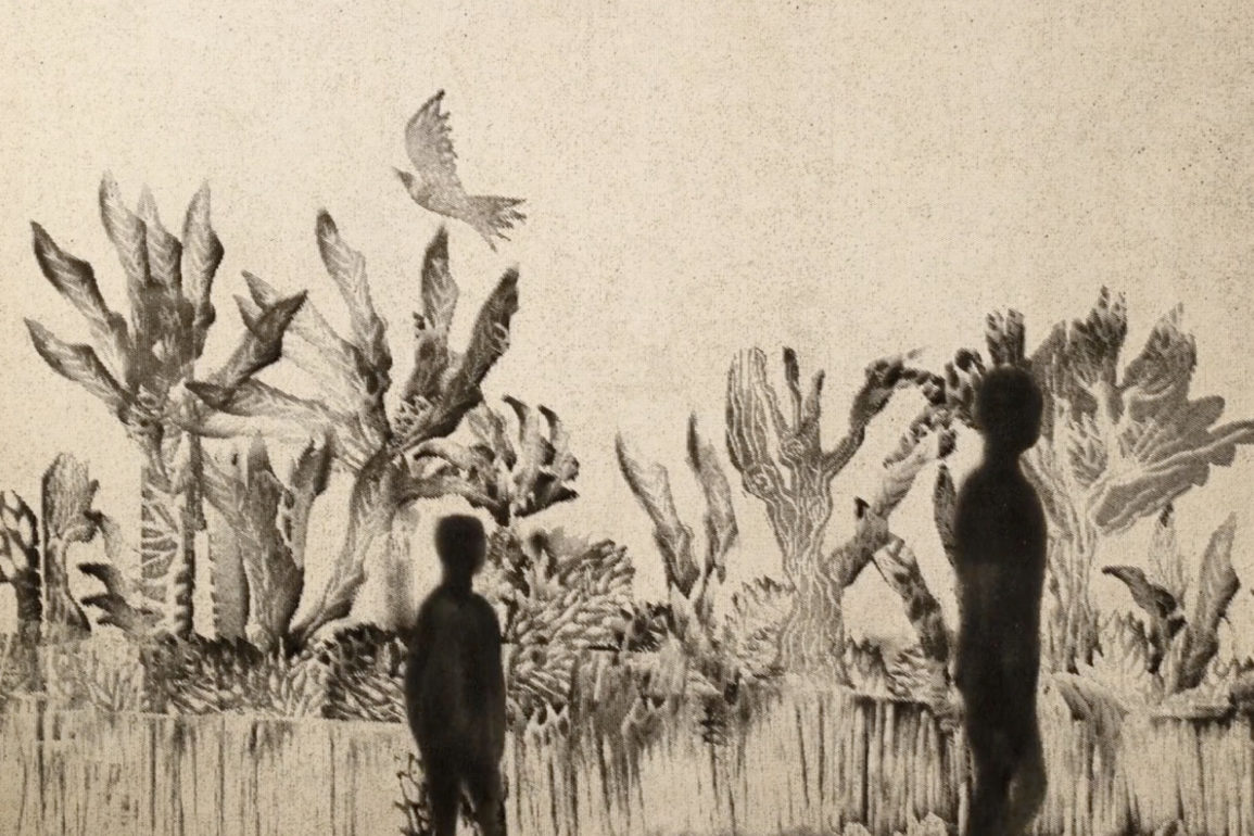 Passage des oiseaux miailhe 5