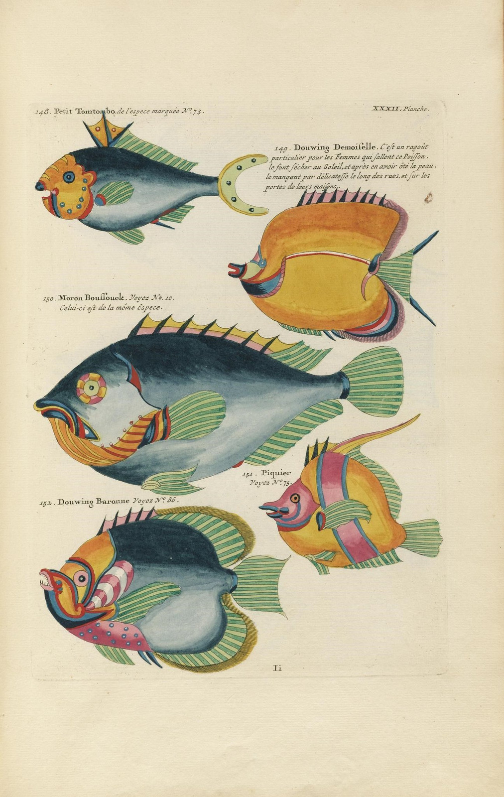 Louis Renard poissons 11