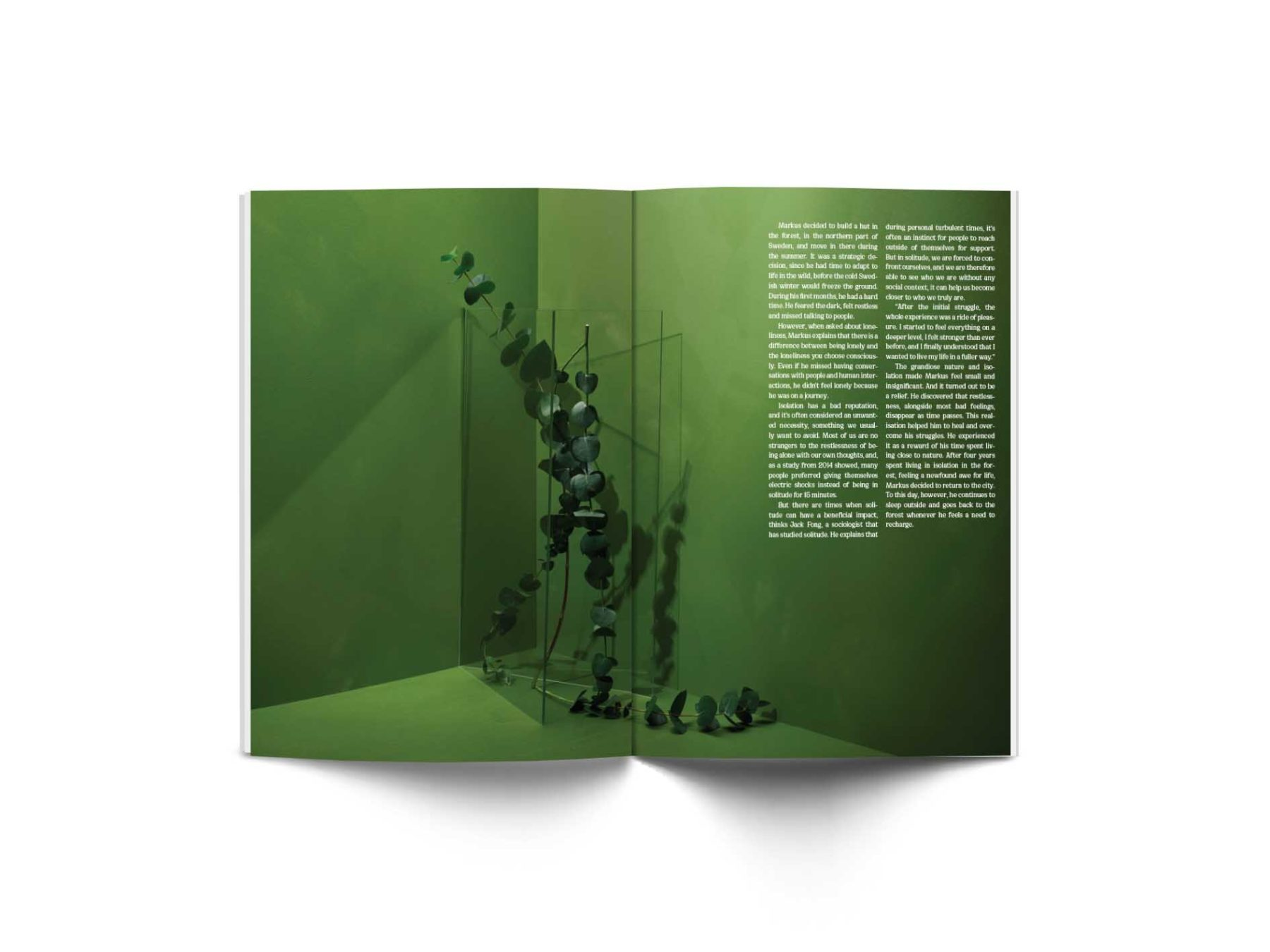 sindroms green 3