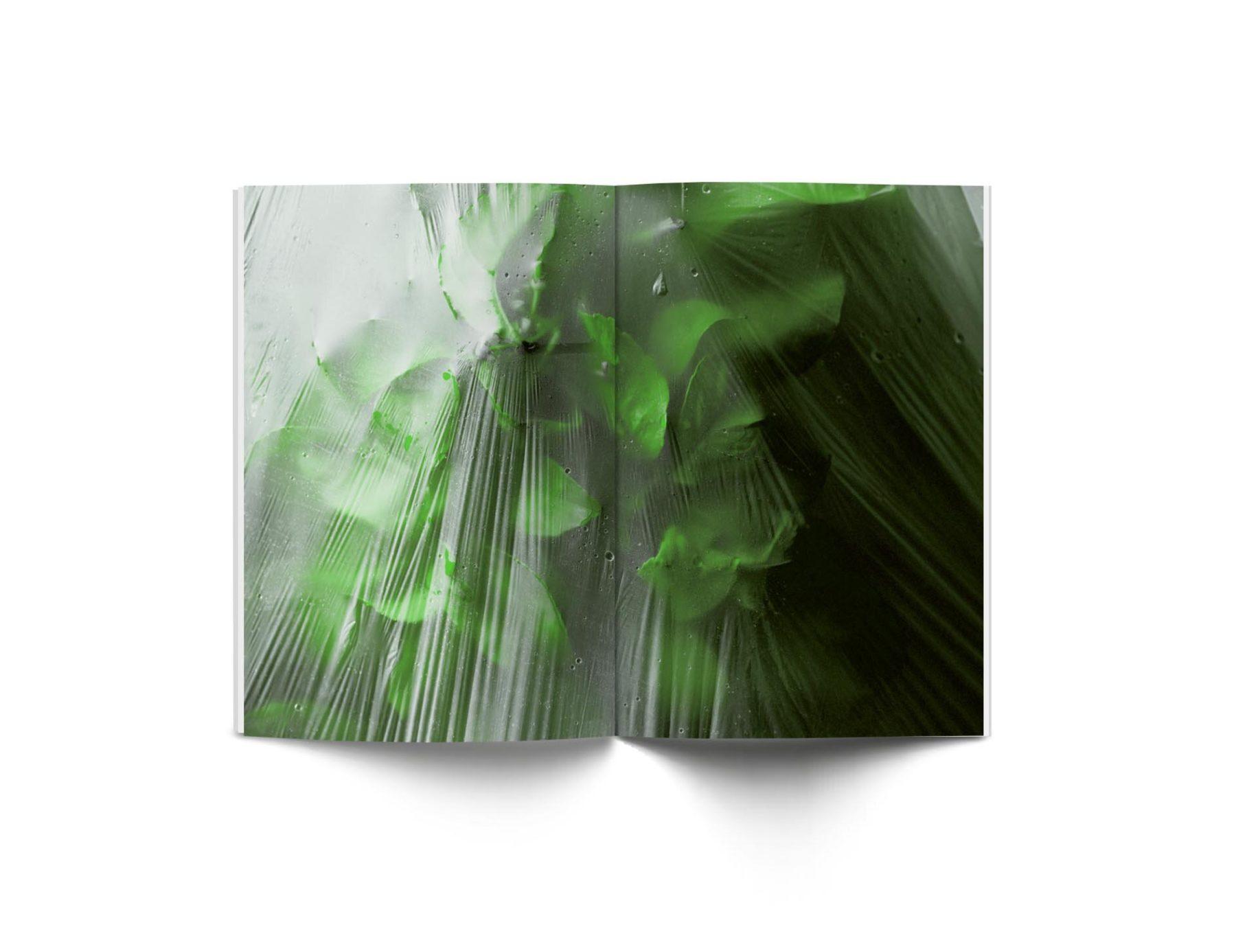 sindroms green 8