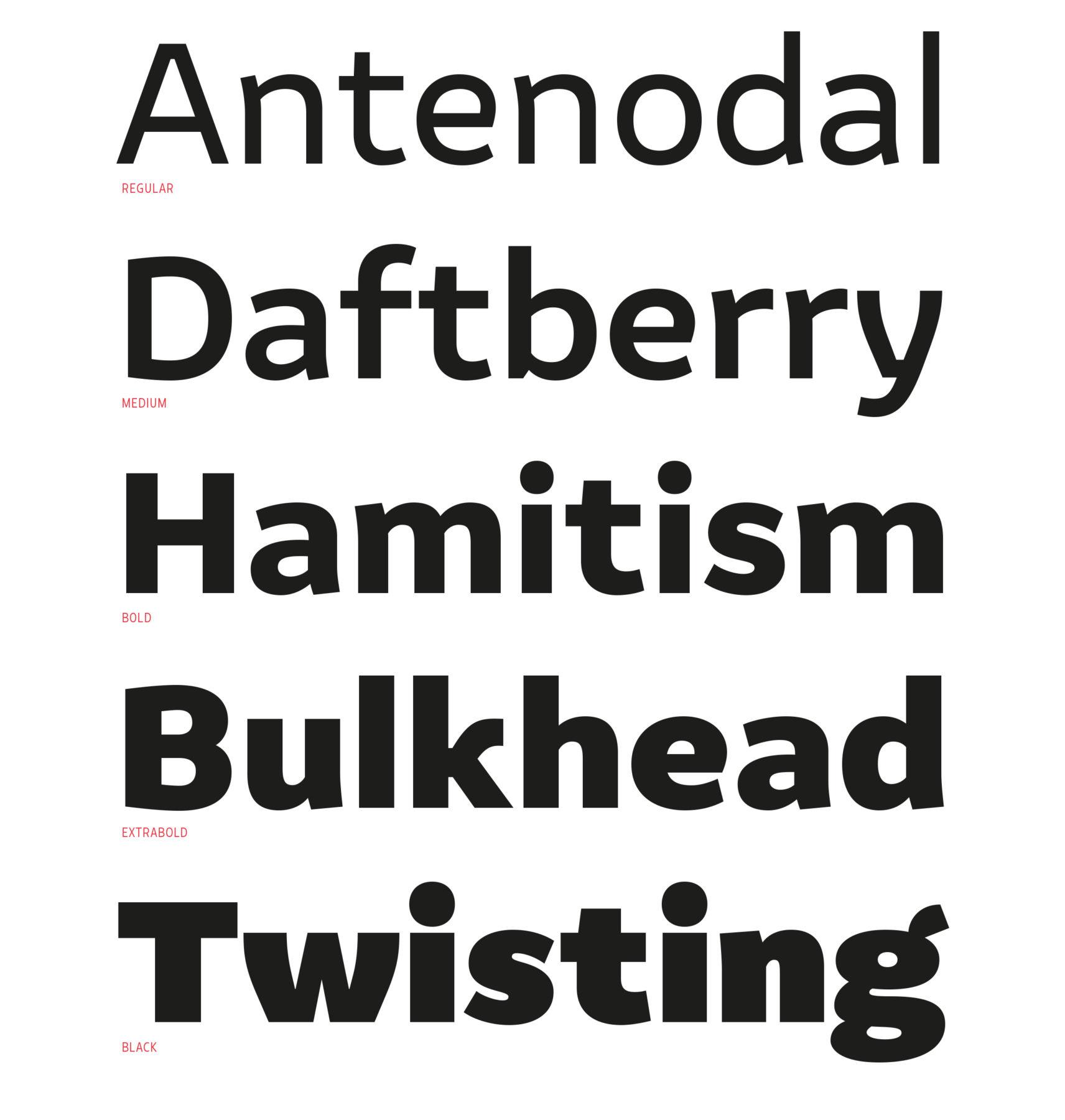 Typeland Amifer1