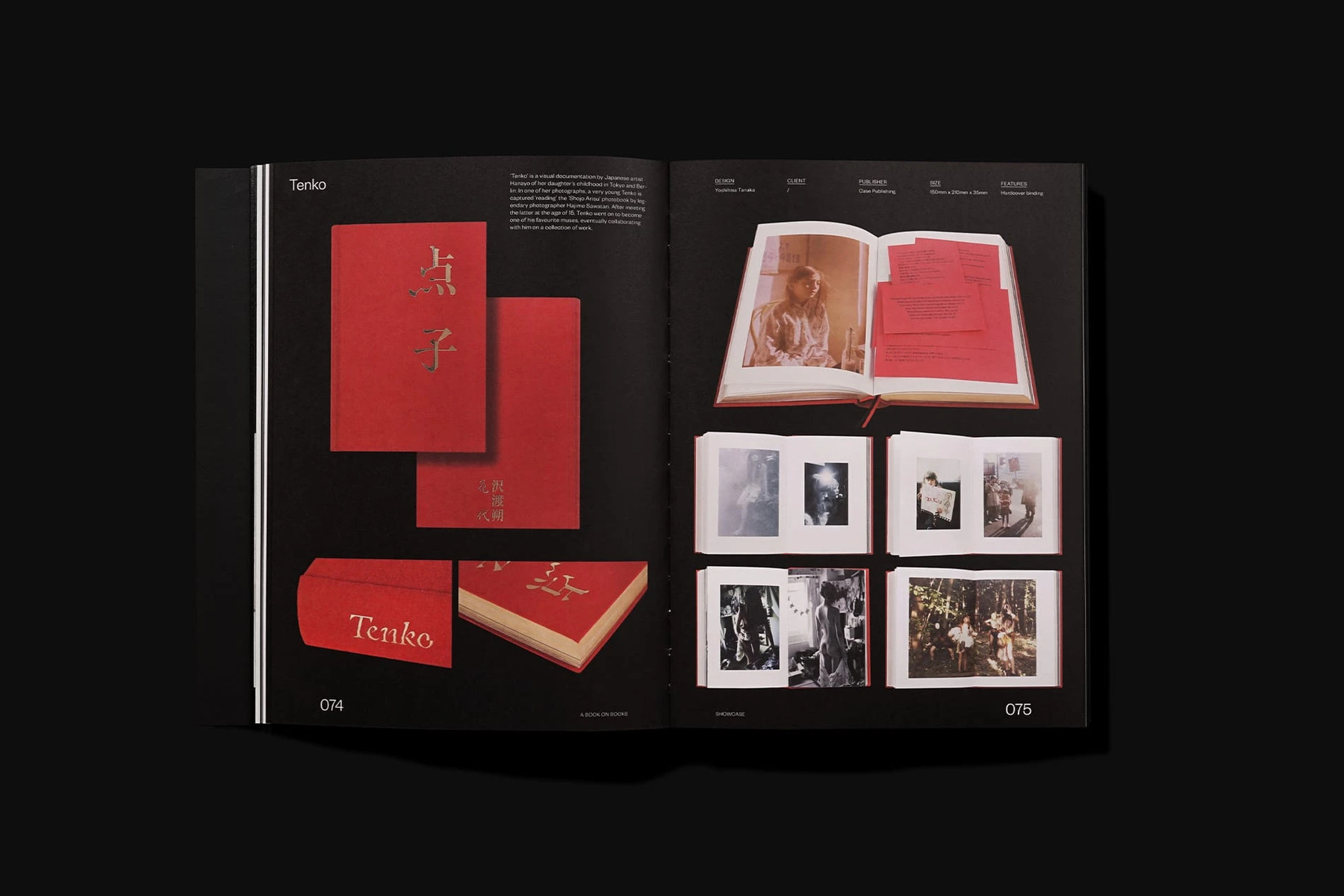 a book on books victionary 6