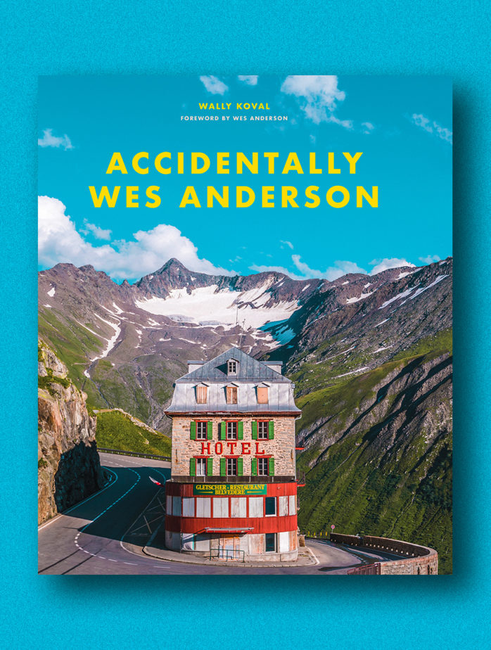 accidentally wes anderson book 1