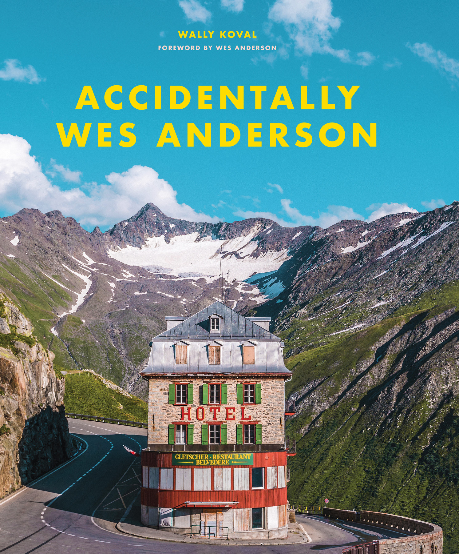 accidentally wes anderson book 2
