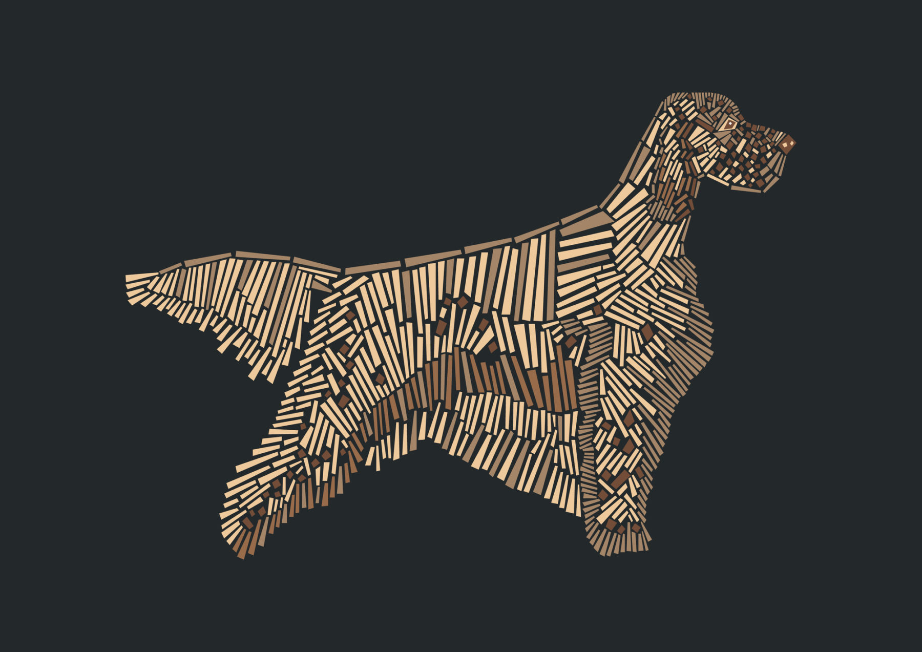 naomi turco Fifty dogs with graphic lines 21
