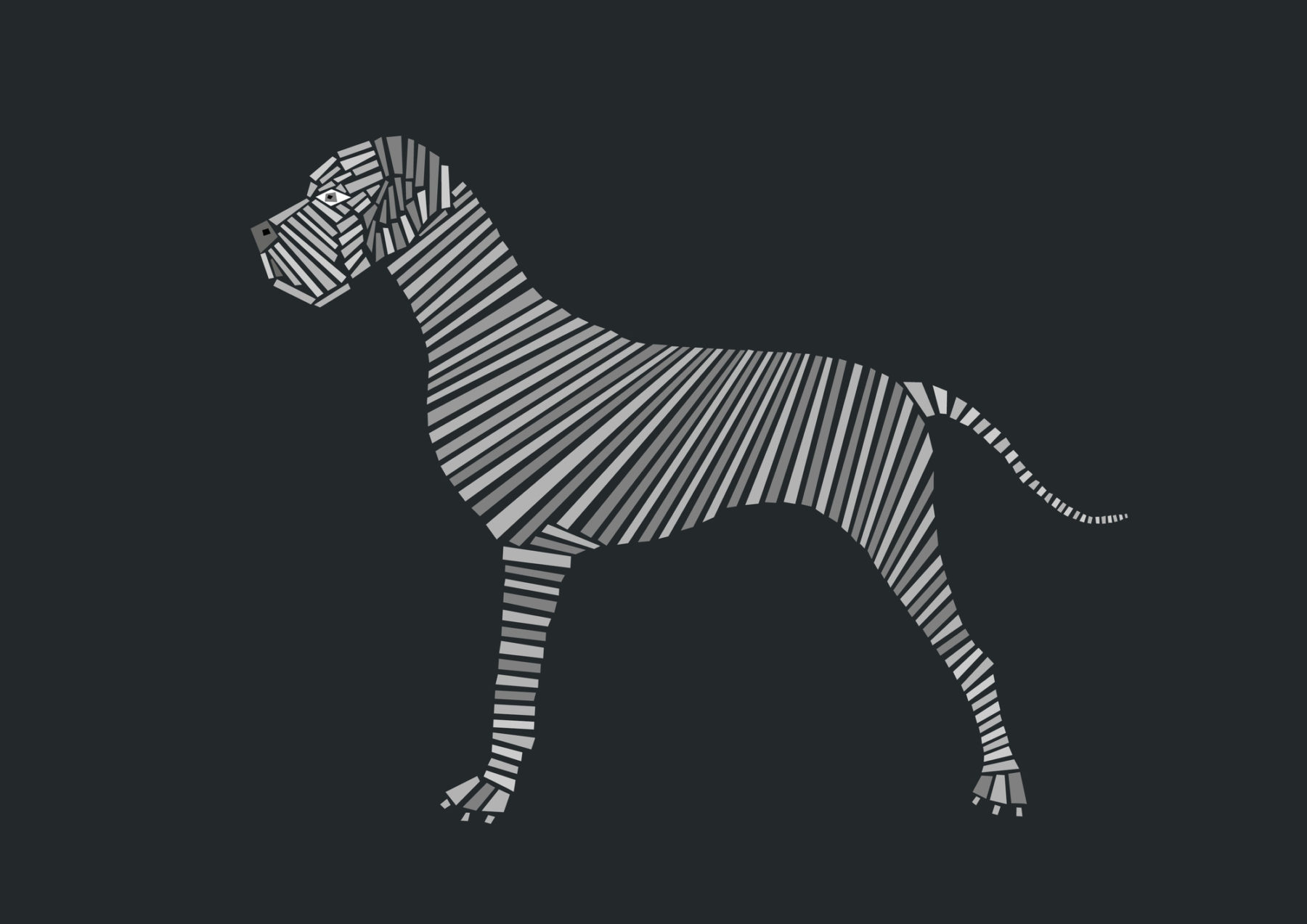 naomi turco Fifty dogs with graphic lines 26