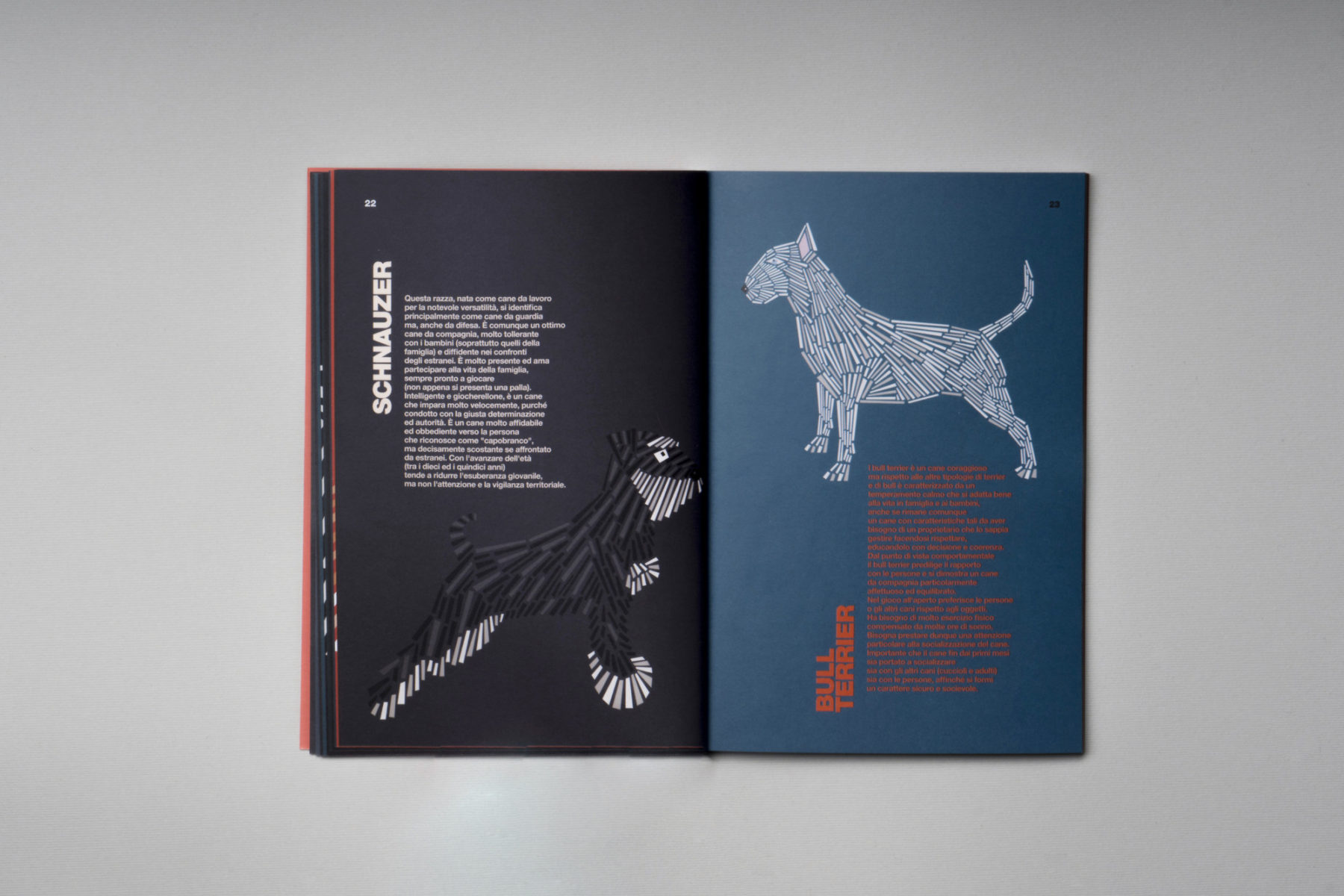 naomi turco Fifty dogs with graphic lines 8