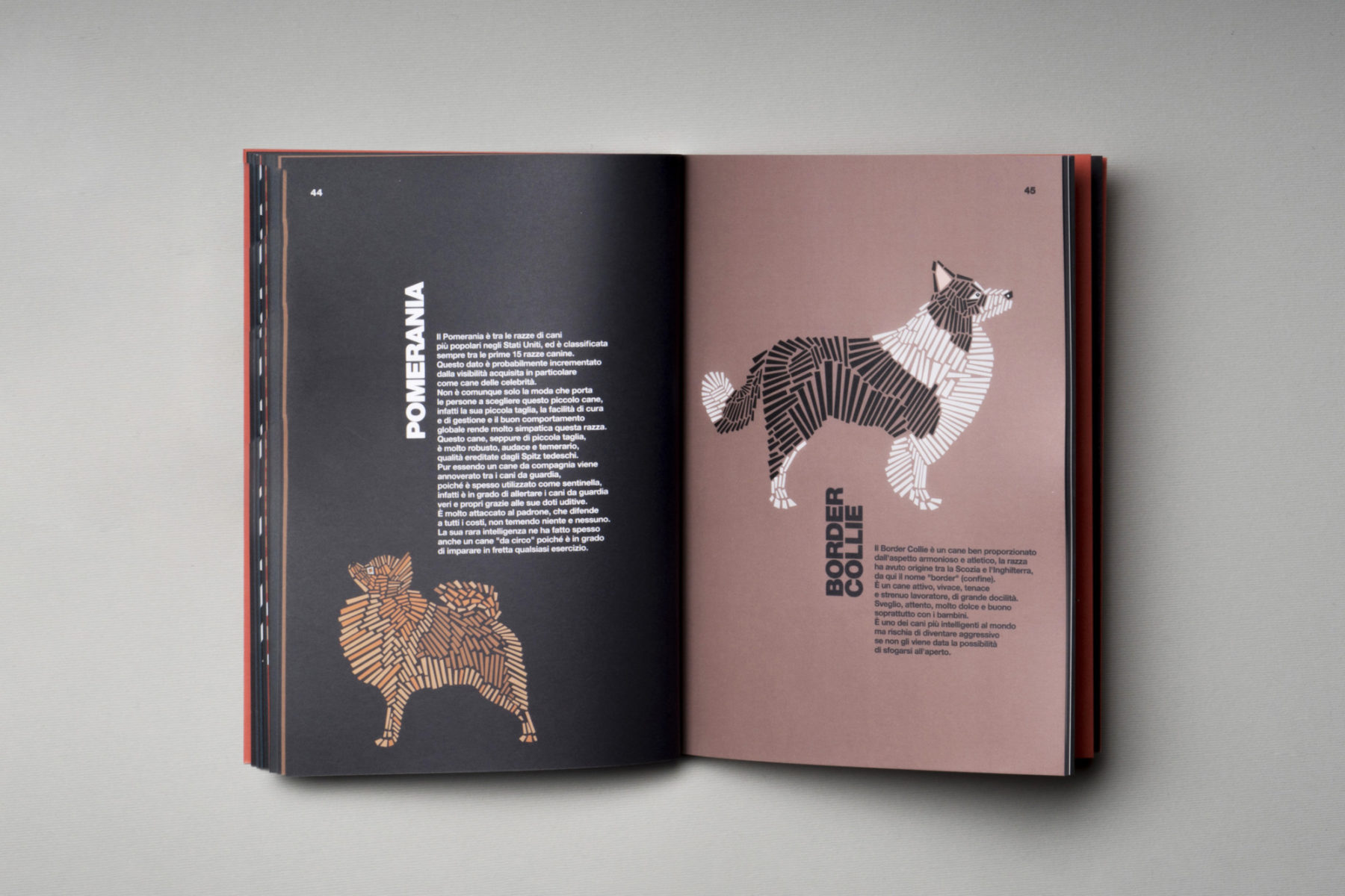 naomi turco Fifty dogs with graphic lines 9